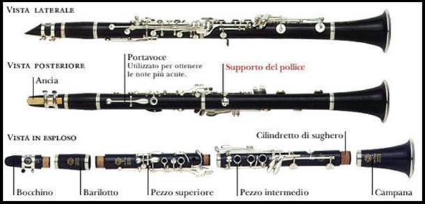 Gli strumenti bandistici for Composizione del parlamento italiano oggi